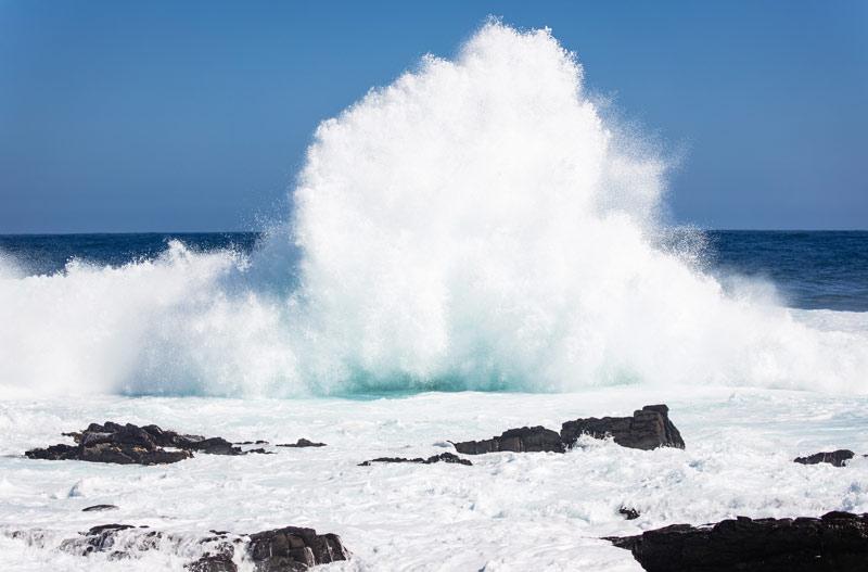 protección medio marino